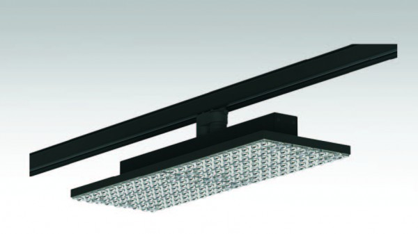Synergy 21 LED Track-Serie für Stromschiene Track-plate Standard DA ww2