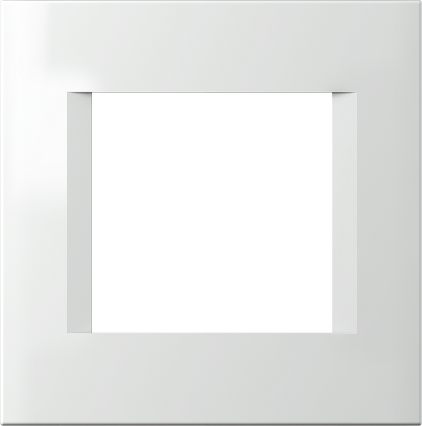 TEM Serie Modul Rahmen OL COVER PLATE LINE2M PW